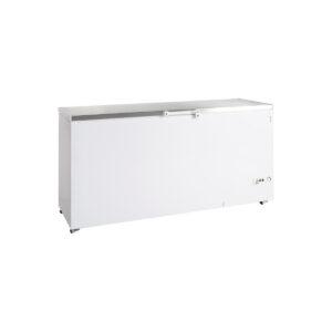 Καταψύκτης Μεγάλης Χωρητικότητας FR605S-i